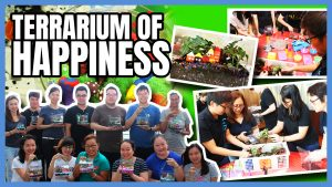 Terrarium of Happiness team building Singapore activity